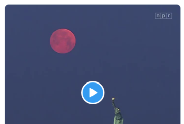 WATCH: Live Video From Hawaii of the Super Flower Blood Moon and More