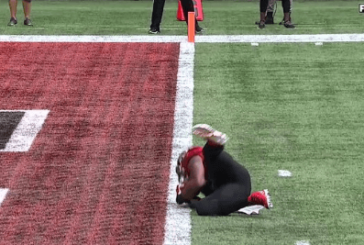 WATCH: Todd Gurley caused his team to lose, by scoring a TD