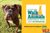 Join Us For Lollypop Farm's Walk For the Animals at Barktober Fest
